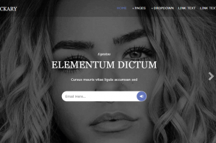 Free Multipurpose Html Website Templates