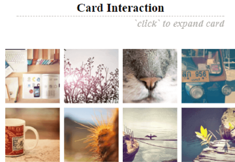 [CSS ] Card Interaction