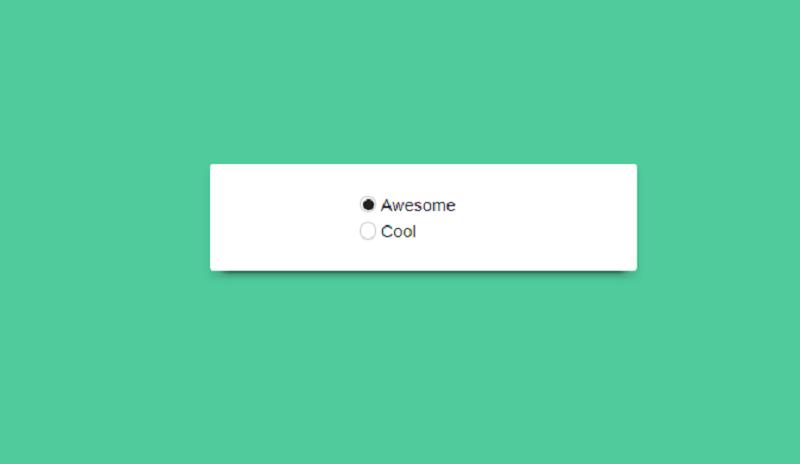 CSS Radio-Button