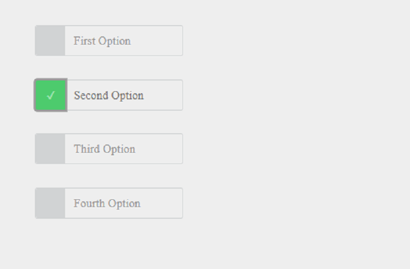 CSS Radio Buttons