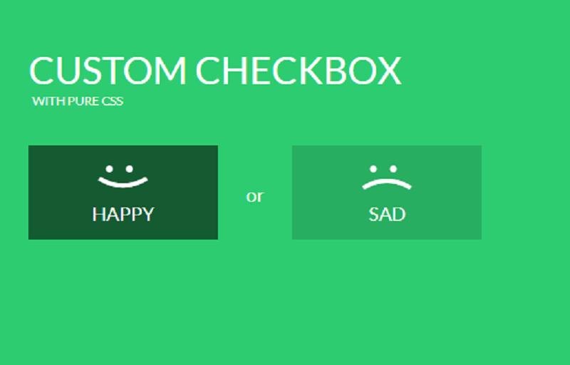 Custom CSS Checkbox