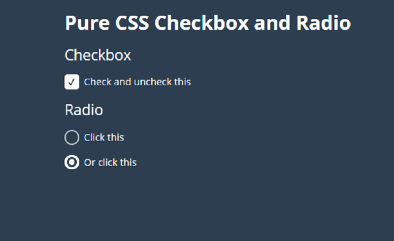 Pure CSS Checkbox and Radio