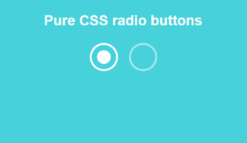 Pure CSS Radio Buttons