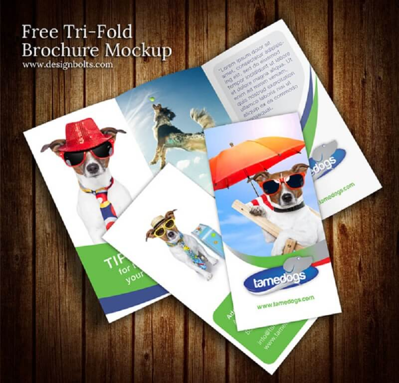 Free Tri Fold Brochure Design Mockup PSD Template