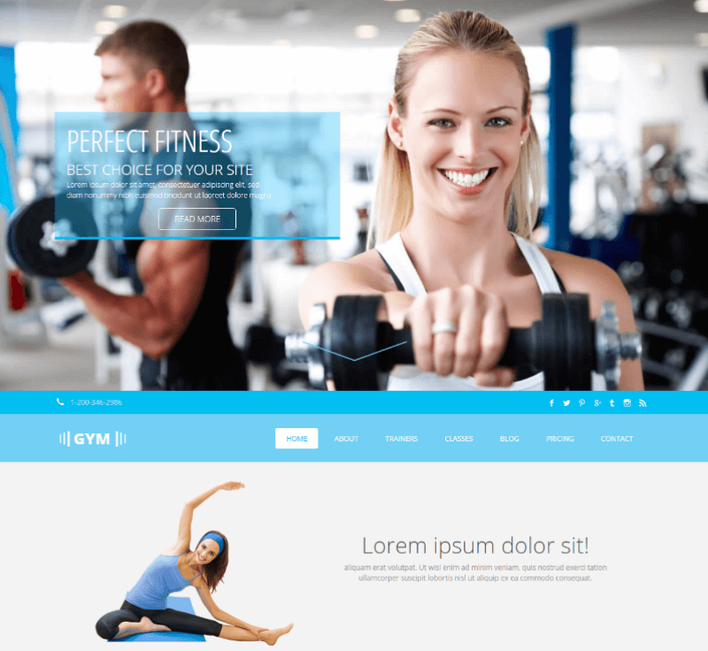 Gym Free CSS Template