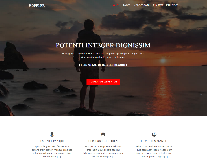 Hoppler Free Website Template