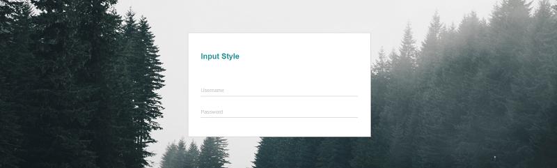 Modern Style Input Text