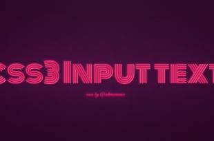 CSS Input Text