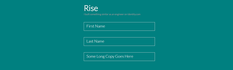 Rise - Input Text Field Label Animation