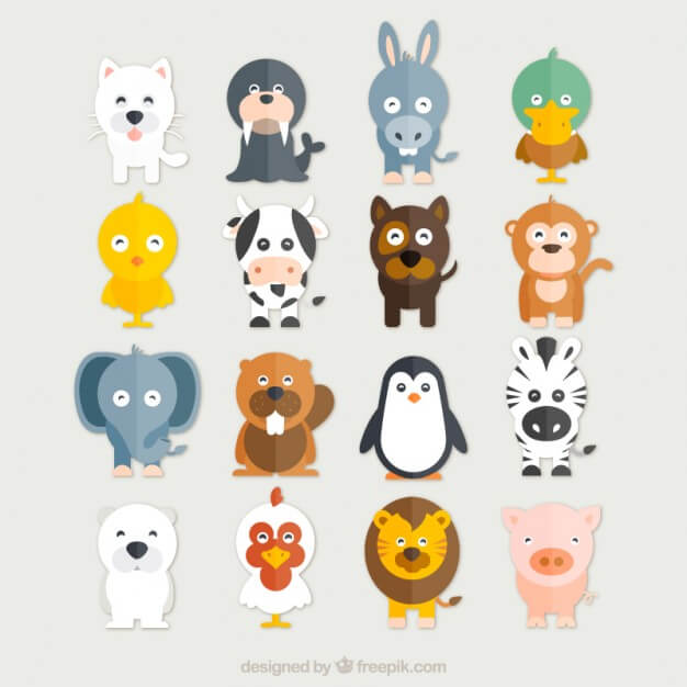 Funny animals collection