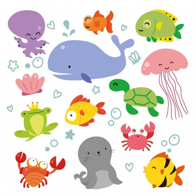 Sealife animals collection