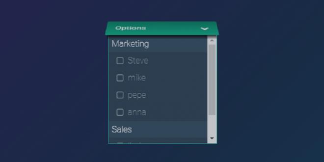 CSS Select Boxes