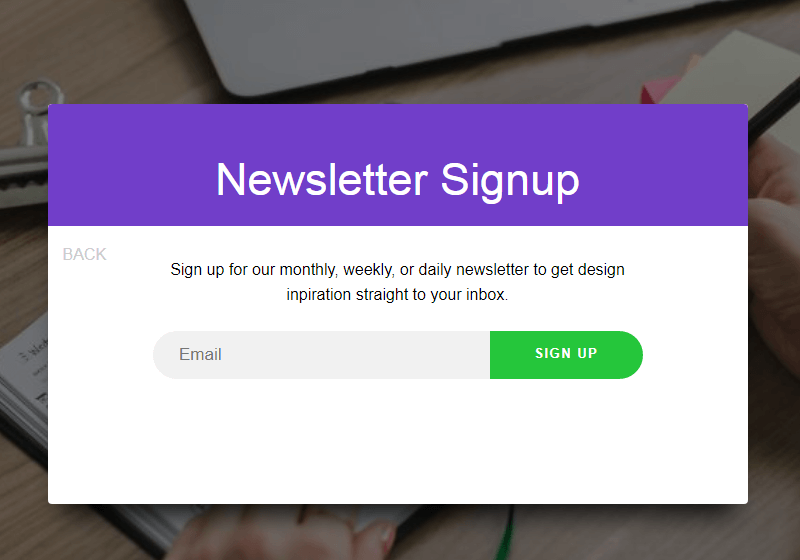 Animated Newsletter Signup Form