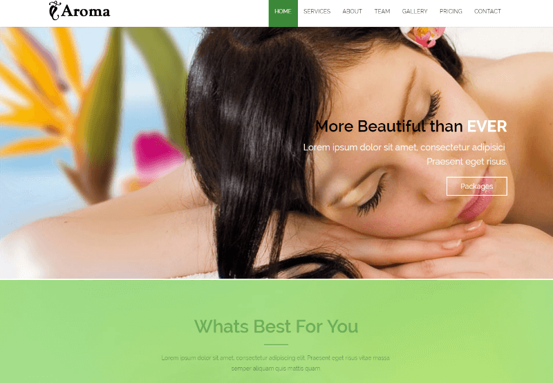 Aroma Beauty and Spa