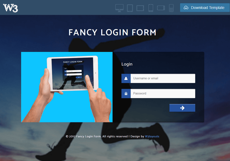 Fancy Login Form