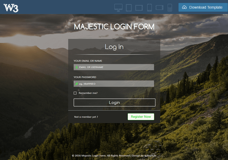 Majestic Login Form