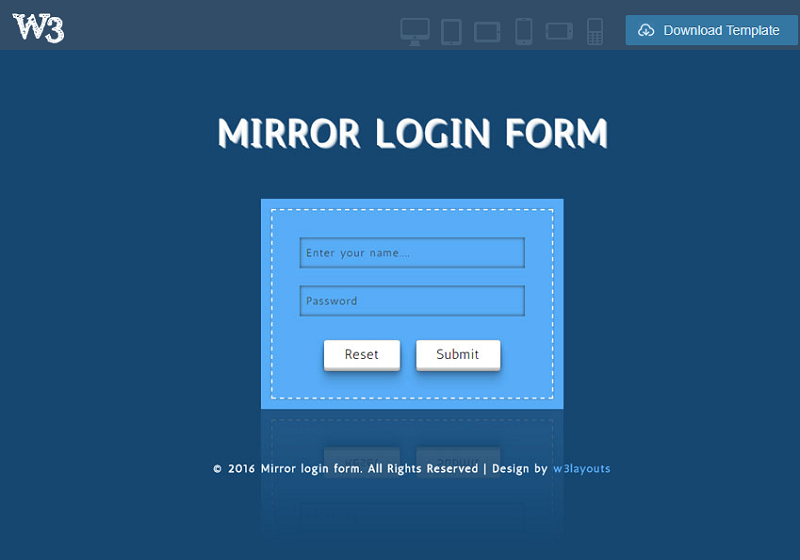 Mirror Login Form