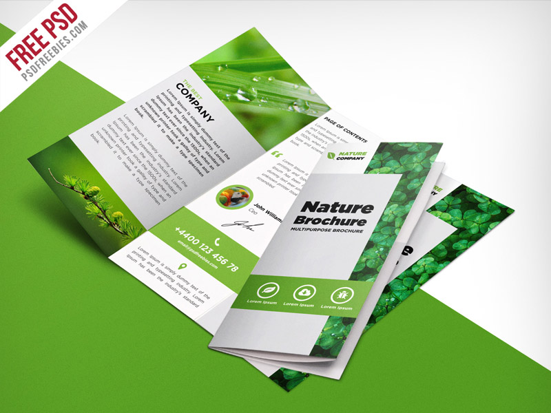 Nature Tri Fold Brochure Template Free PSD