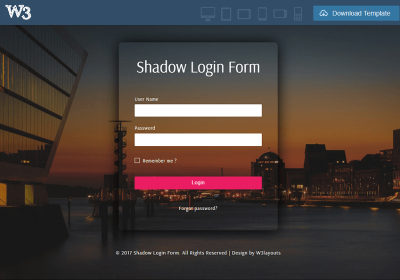 Shadow Login Form