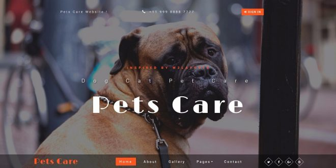 Free Animals Pets Html Website Templates