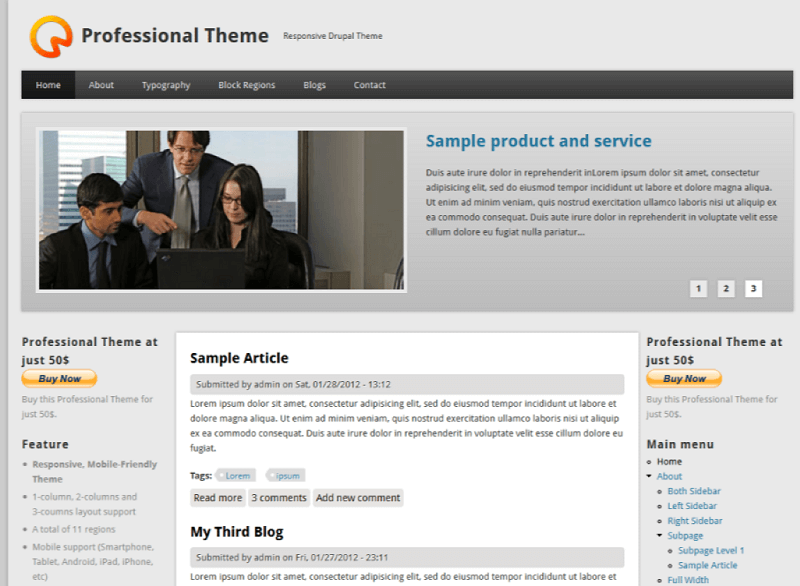 Professional Theme