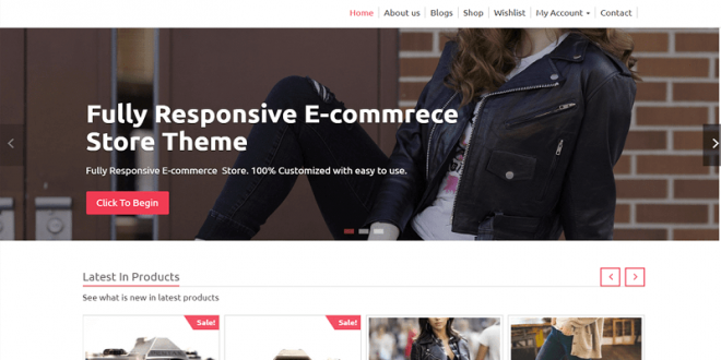 Free WordPress Ecommerce Themes