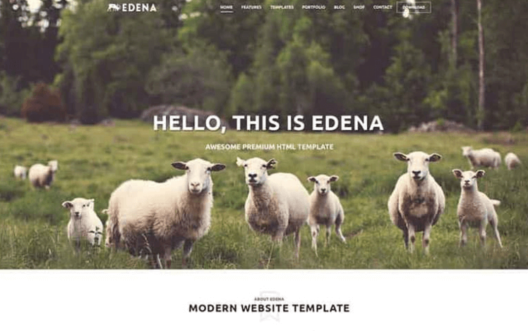 Edena PSD Website Template