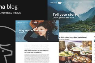 Best Clean Wordpress Themes
