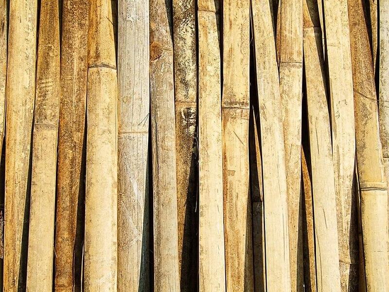 Bamboo texture thailand brown