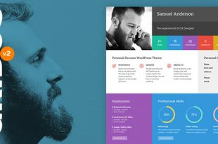 Best Flat Design Wordpress Themes