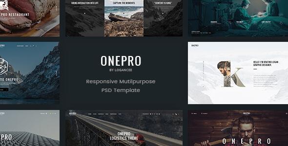 OnePro