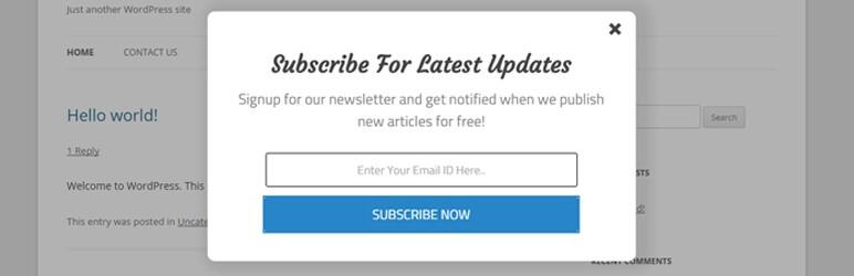 Elegant Subscription Popup