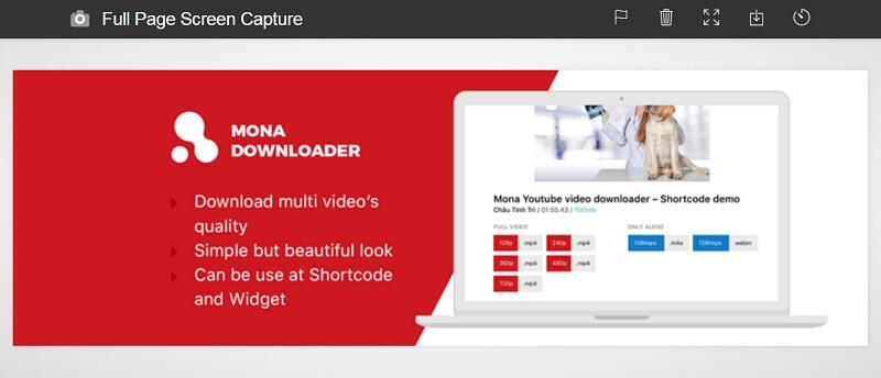 Mona Youtube Downloader