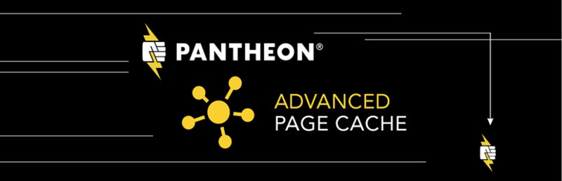 Pantheon Advanced Page Cache