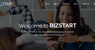 bizstart free wordpress theme