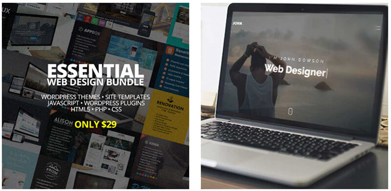 Essential Web Design Bundle