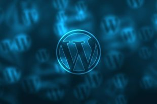 Wordpress Is On The Track
